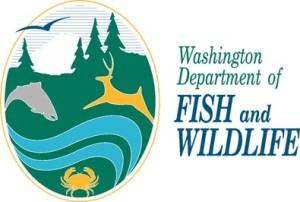 washington-department-fish-wildlife